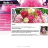 Website Made by Jo